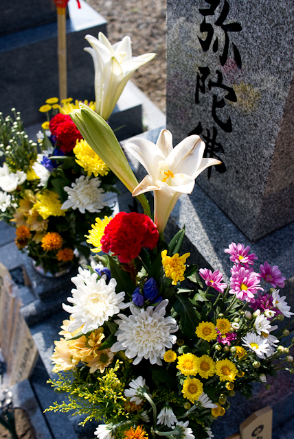 2010081601.jpg